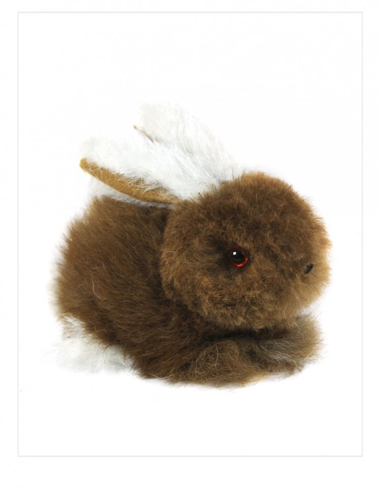 Chico Bunny: Alpaca Fur