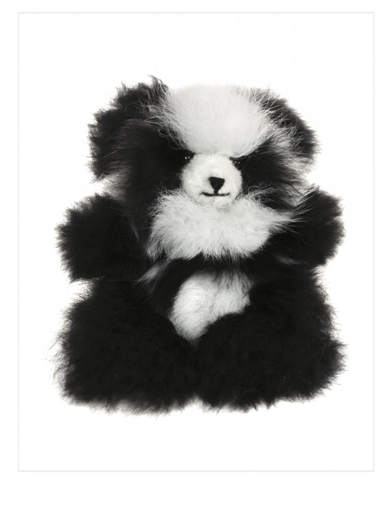 Chico Panda: Alpaca Fur