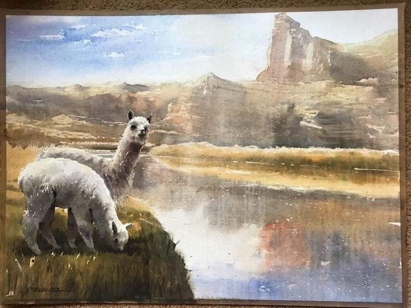 Original Art Watercolor Alpaca Scene